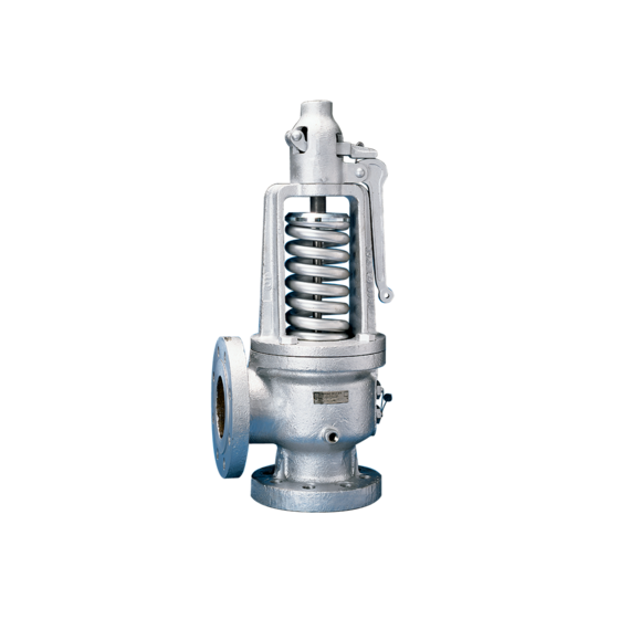 Models 300/600 Safety Relief Valves